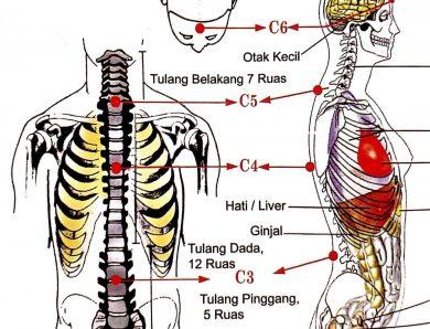 [Profil] Longevitology : Menyalurkan Cinta Kasih dengan Energi Semesta